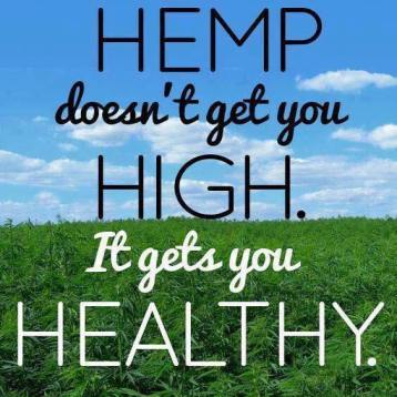 Hemp not high healthy